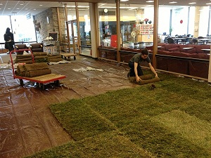 LawnInstallation Cornell Puts a Lawn in the Library