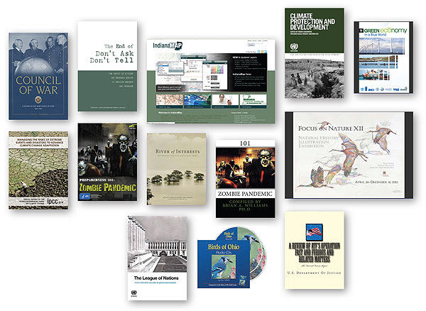 ljx130601webGovDocs1a Notable Government Documents of 2012: Looking Back, Moving Ahead