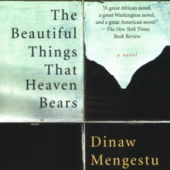 The_Beautiful_Things_That_Heaven_Bears_cover_square