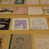 A selection of Hevelin fanzines