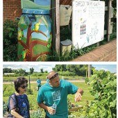 "GROWING ON US Arlington PL, VA (top), offers informative ""Garden Talks""; St. Louis County Library (bottom) installed its first garden in 2013. Top photo courtesy of Arlington PL; bottom photo courtesy of St. Louis County Library"