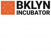 BPL's BKLYN Incubator Project to Fund Innovative Programming