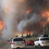 Canadian Libraries Help Fort McMurray Fire Evacuees