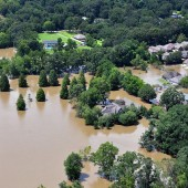 Louisiana Libraries Emerge from Flooding Largely Intact, Anticipate Later Losses