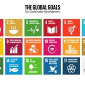 """Acting for Humanity"": Libraries Worldwide Respond to UN Sustainable Development Goals 