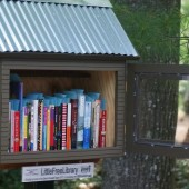 Little Free Libraries | Office Hours