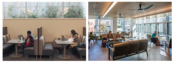"""(l.-r.) The basement light wells bring daylight below street level; and more light fills the """"porch"""" reading room on the second level. left photo by Kevin Henegan; right photo by  Robert Benson"""